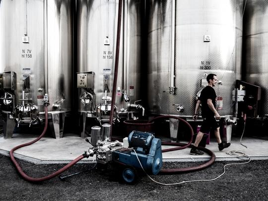 State of the art vinification and bottling 1