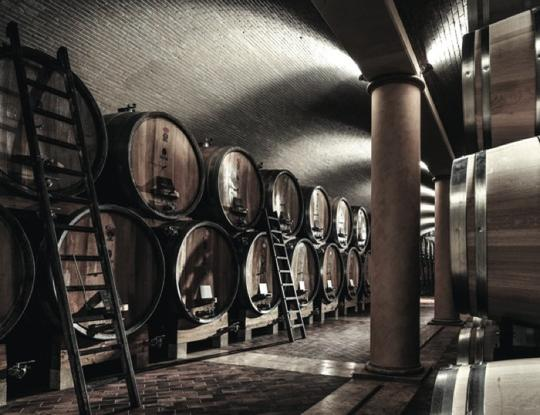 The cellar, where we exalt what the vineyard gives us 1